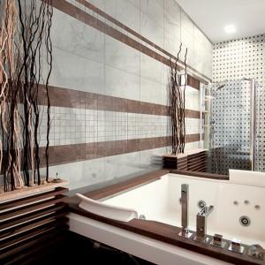 Inspirace koupelnami Alfalux - řešení luxusní koupelny