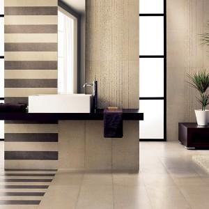 Inspirace koupelnami Alfalux - prostorná koupelna světlá s kontrastními prvky