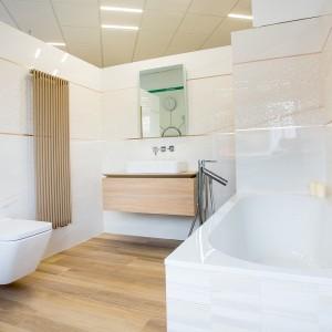 Vzorková koupelna ve studiu Gremis - řešení koupelny
