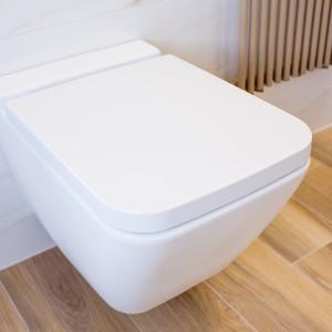 Detail vzorkové koupelny v koupelnovém studiu Gremis - bílá toaleta