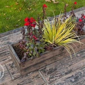 Dlažba Ferobet v přírodní barvě k dostání v obchodě Gremis, příklad použití v zahradě